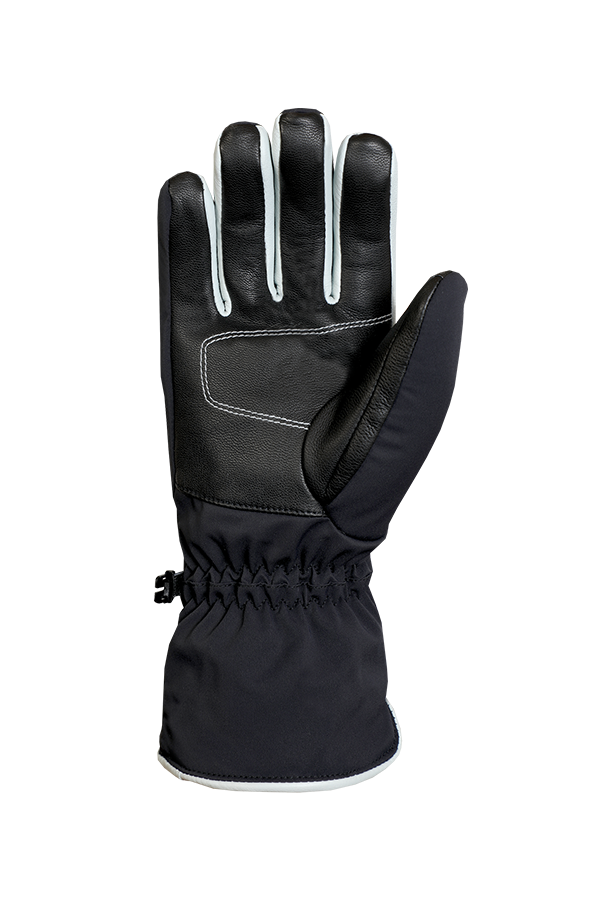 Chamber GTX Glove, glove with Gore-Tex 2 in 1 technology, in the colours blue and white, view palm