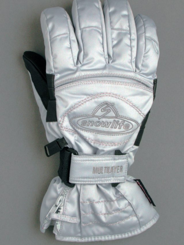 silver lady glove from 2000