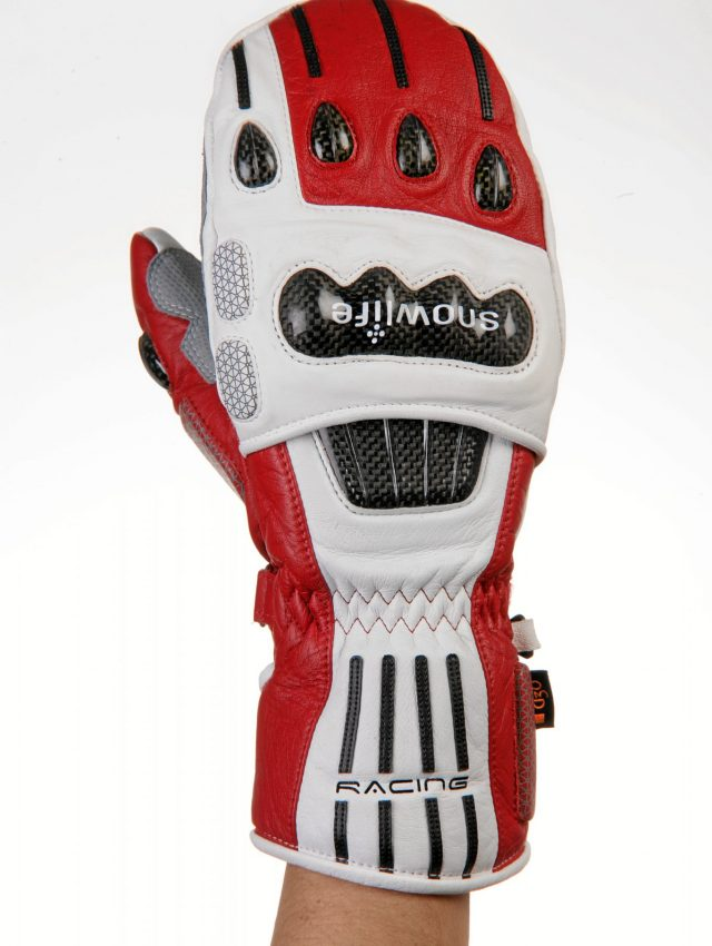 Racing glove from 2004